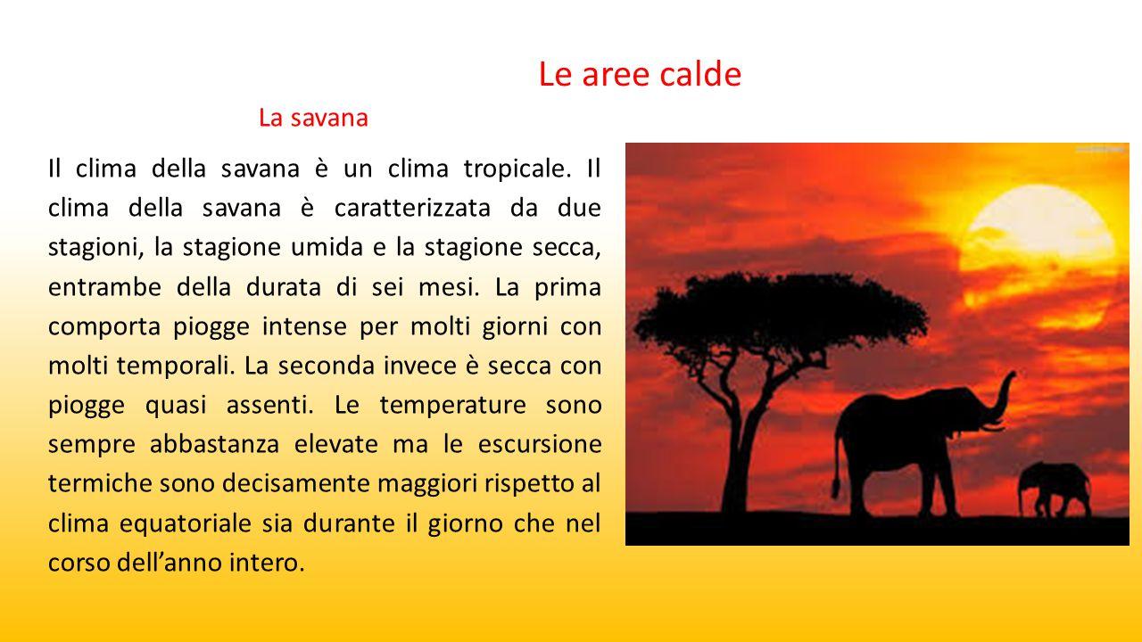 La savana Il clima della savana è un clima tropicale. Il clima della savana è caratterizzata da due stagioni, la stagione umida e la stagione secca, e