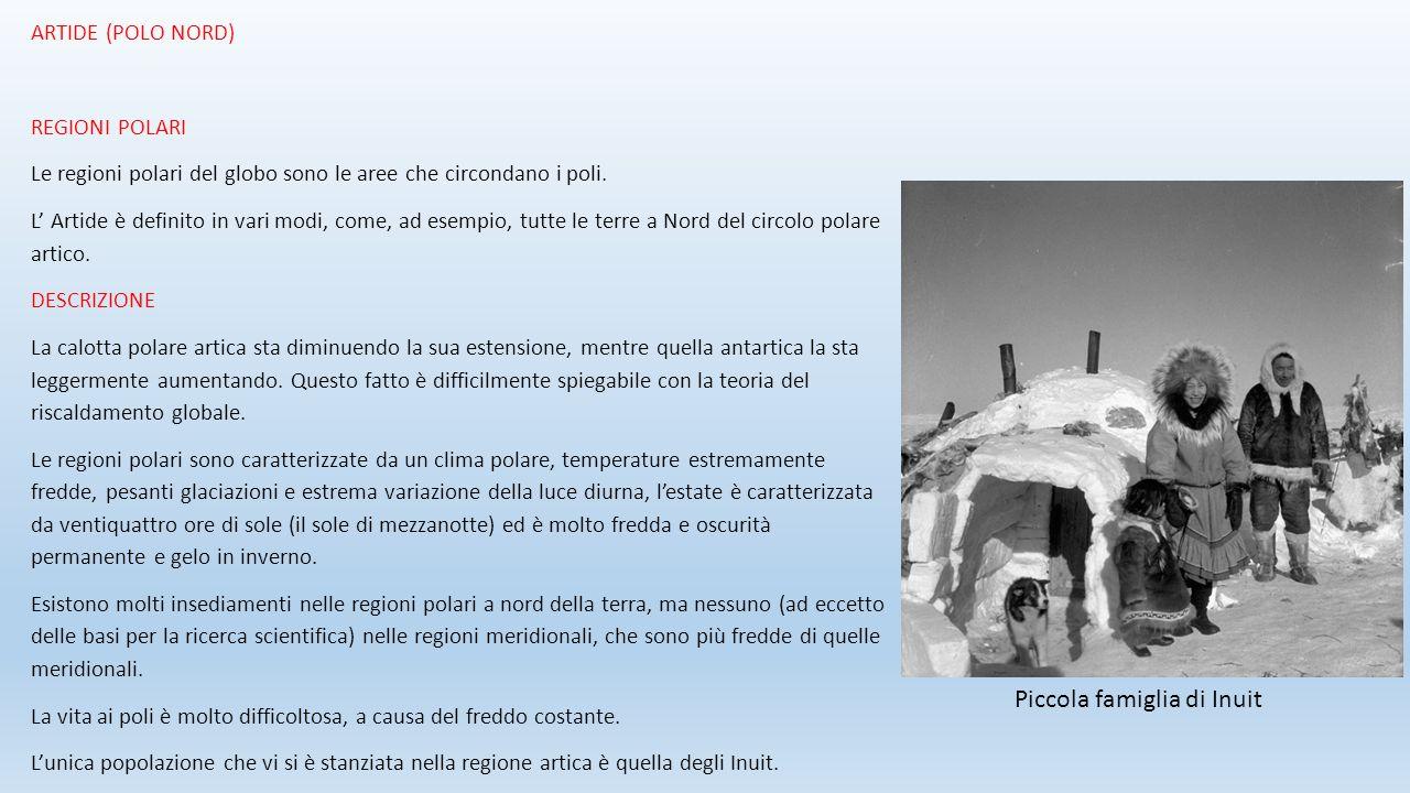 ARTIDE (POLO NORD) REGIONI POLARI Le regioni polari del globo sono le aree che circondano i poli. L' Artide è definito in vari modi, come, ad esempio,