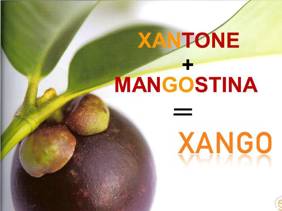 XANTONE MANGOSTINA +