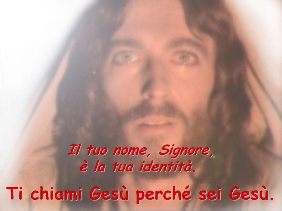 Il tuo nome, Signore, è la tua identità. Ti chiami Gesù perché sei Gesù.