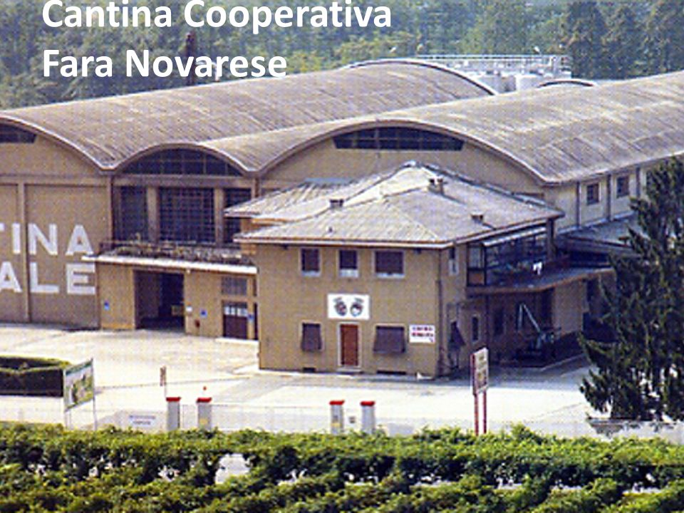 Cantina Cooperativa Fara Novarese