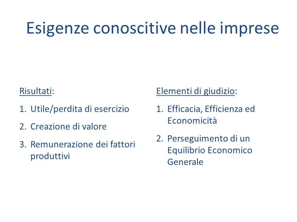 Esigenze conoscitive nelle imprese Elementi di giudizio: 1.Efficacia, Efficienza ed Economicità 2.Perseguimento di un Equilibrio Economico Generale Ri