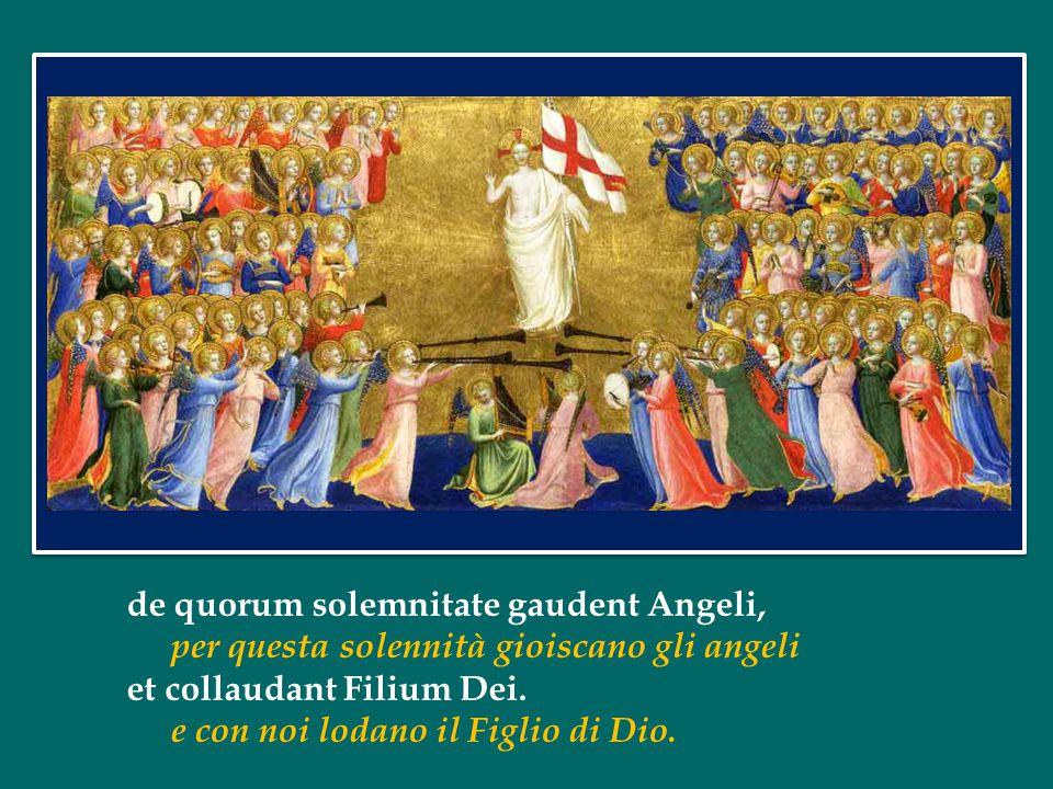 de quorum solemnitate gaudent Angeli, per questa solennità gioiscano gli angeli et collaudant Filium Dei.