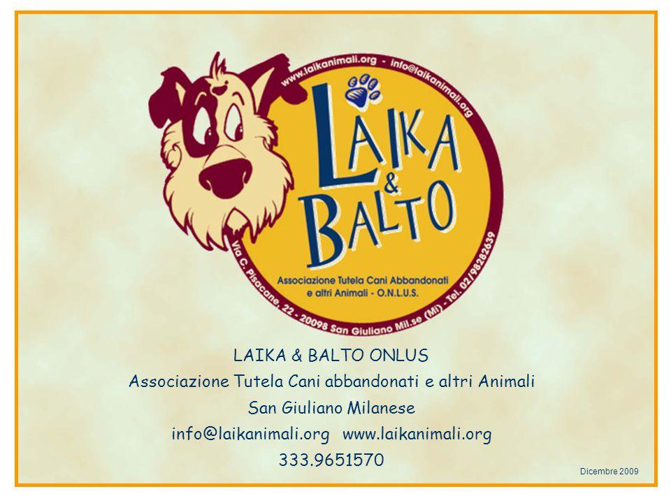 LAIKA & BALTO ONLUS Associazione Tutela Cani abbandonati e altri Animali San Giuliano Milanese info@laikanimali.org www.laikanimali.org 333.9651570 Dicembre 2009