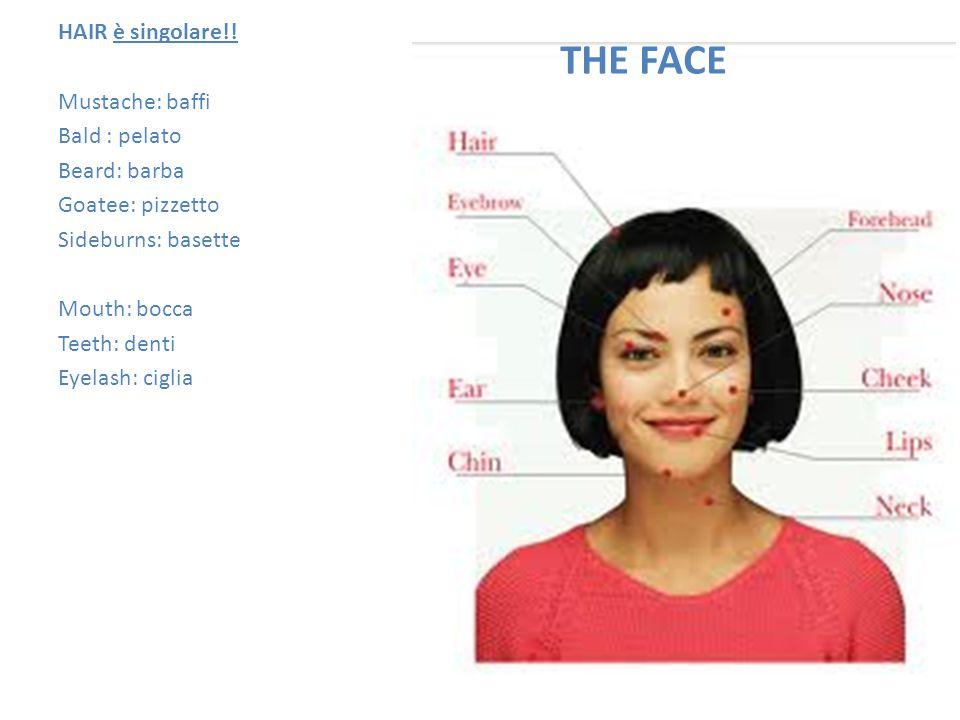 THE FACE HAIR è singolare!.