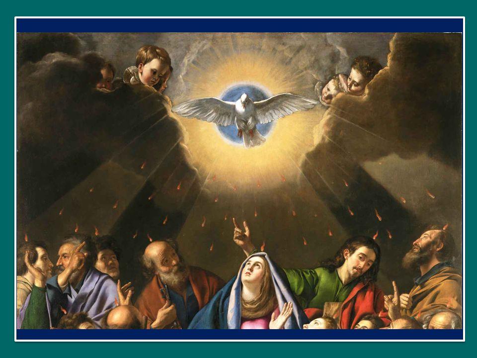 Papa Francesco ha dedicato l'Udienza Generale di mercoledì 4 giugno 2014 in Piazza San Pietro al Dono della Pietà Papa Francesco ha dedicato l'Udienza Generale di mercoledì 4 giugno 2014 in Piazza San Pietro al Dono della Pietà