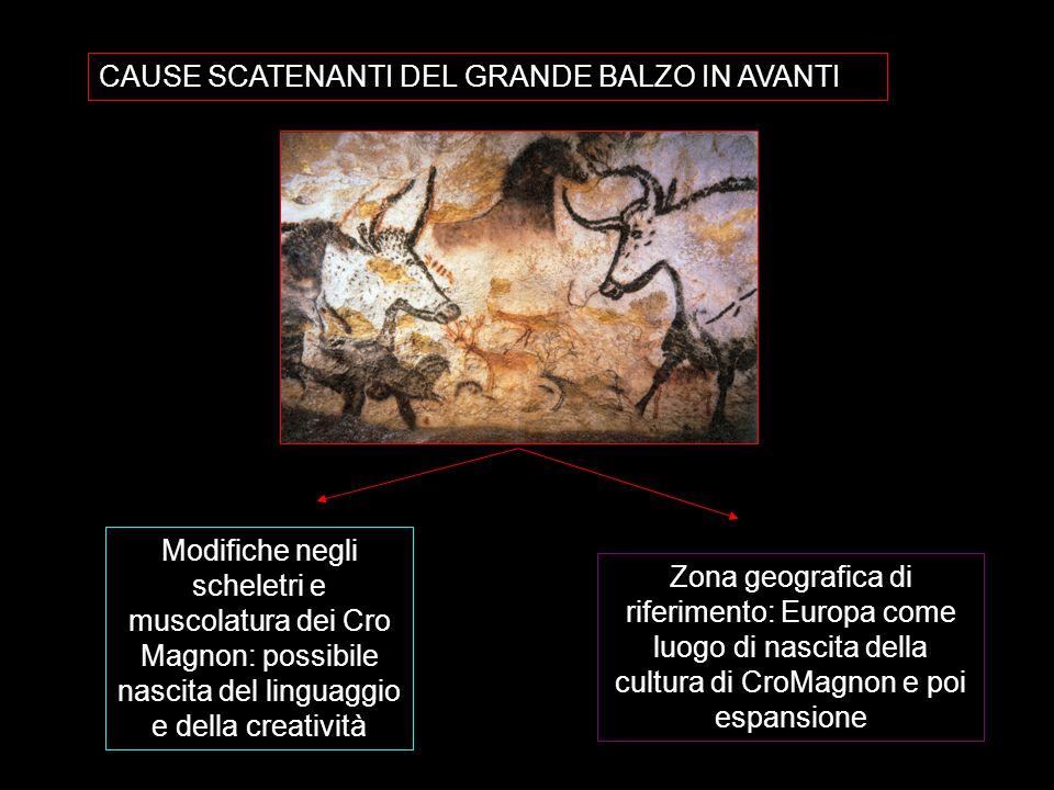 CAUSE SCATENANTI DEL GRANDE BALZO IN AVANTI Modifiche negli scheletri e muscolatura dei Cro Magnon: possibile nascita del linguaggio e della creativit