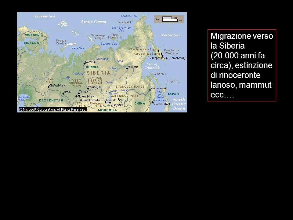 Migrazione verso la Siberia (20.000 anni fa circa), estinzione di rinoceronte lanoso, mammut ecc….
