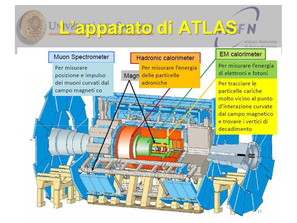 Analisi di eventi in ATLAS Cosa Vedete.Alcun segno di Elettrone o Muone.