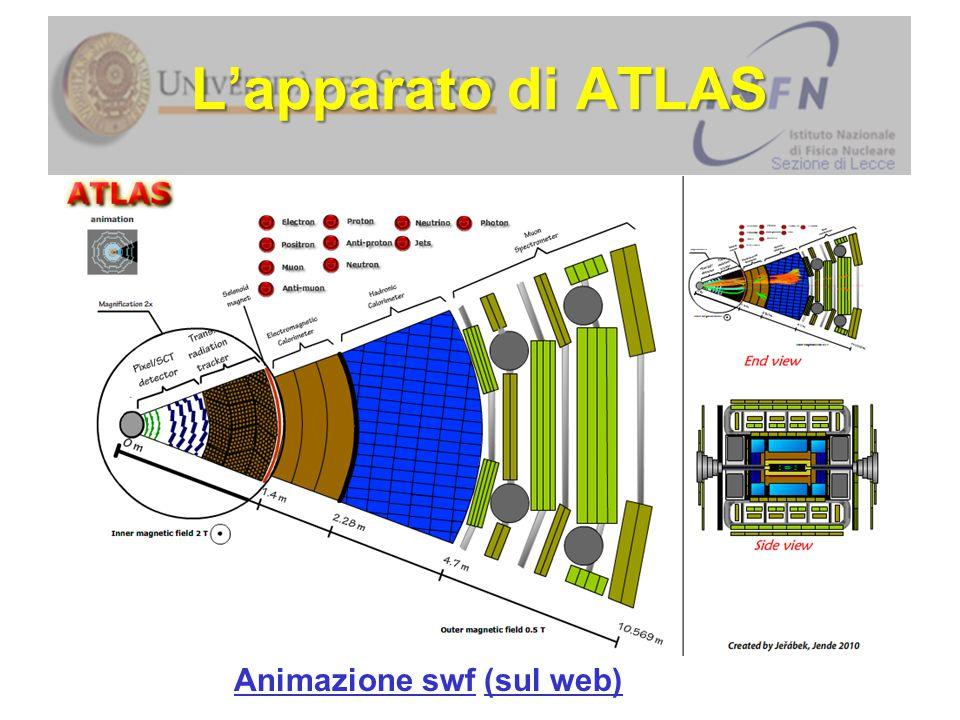 Animazione swfAnimazione swf (sul web)(sul web) L'apparato di ATLAS