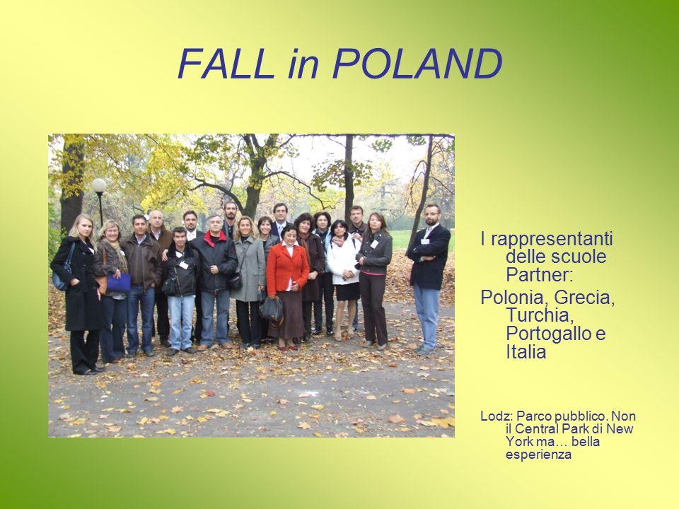 FALL in POLAND I rappresentanti delle scuole Partner: Polonia, Grecia, Turchia, Portogallo e Italia Lodz: Parco pubblico.