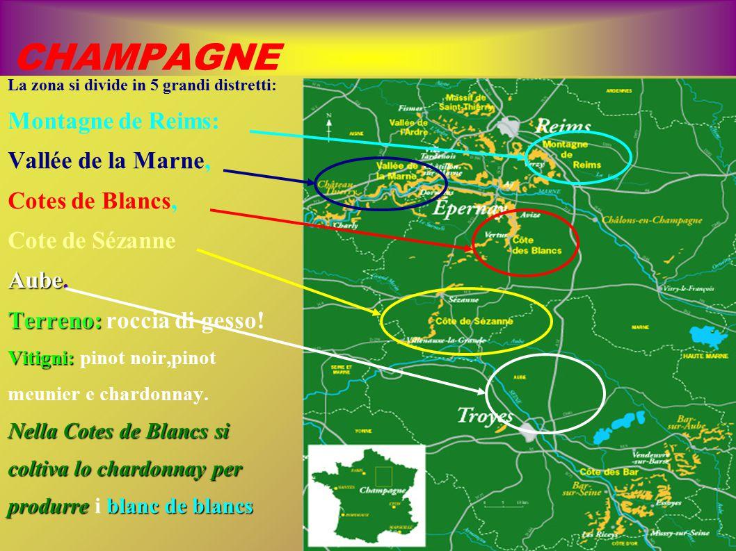 CHAMPAGNE La zona si divide in 5 grandi distretti: Montagne de Reims: Vallée de la Marne, Cotes de Blancs, Cote de Sézanne Aube Aube. Terreno: Terreno