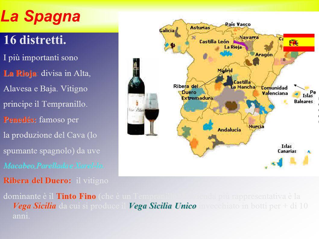 La Spagna 16 distretti. I più importanti sono La Rioja La Rioja: divisa in Alta, Alavesa e Baja. Vitigno principe il Tempranillo. Penedés: Penedés: fa