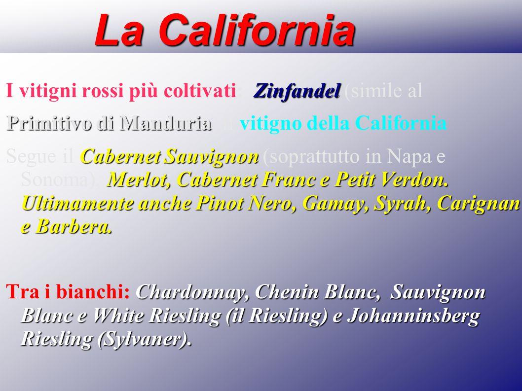 La California Zinfandel I vitigni rossi più coltivati: Zinfandel (simile al Primitivo di Manduria Primitivo di Manduria) il vitigno della California C