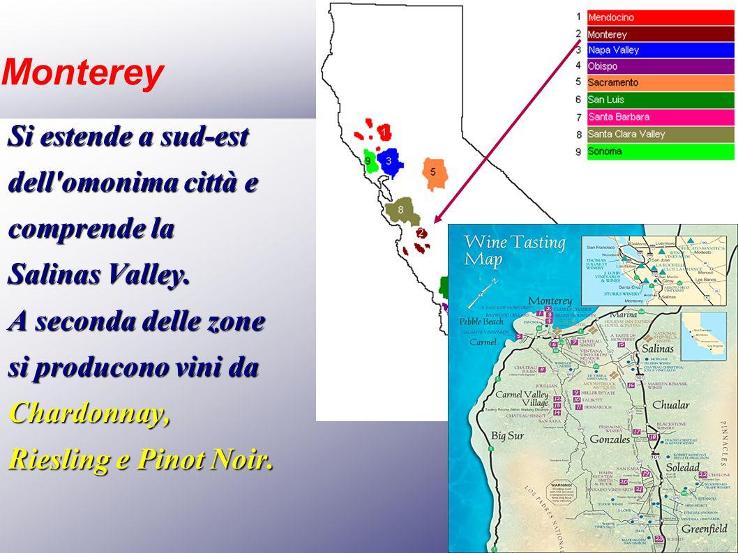 Monterey Si estende a sud-est dell'omonima città e comprende la Salinas Valley. A seconda delle zone si producono vini da Chardonnay, Riesling e Pinot