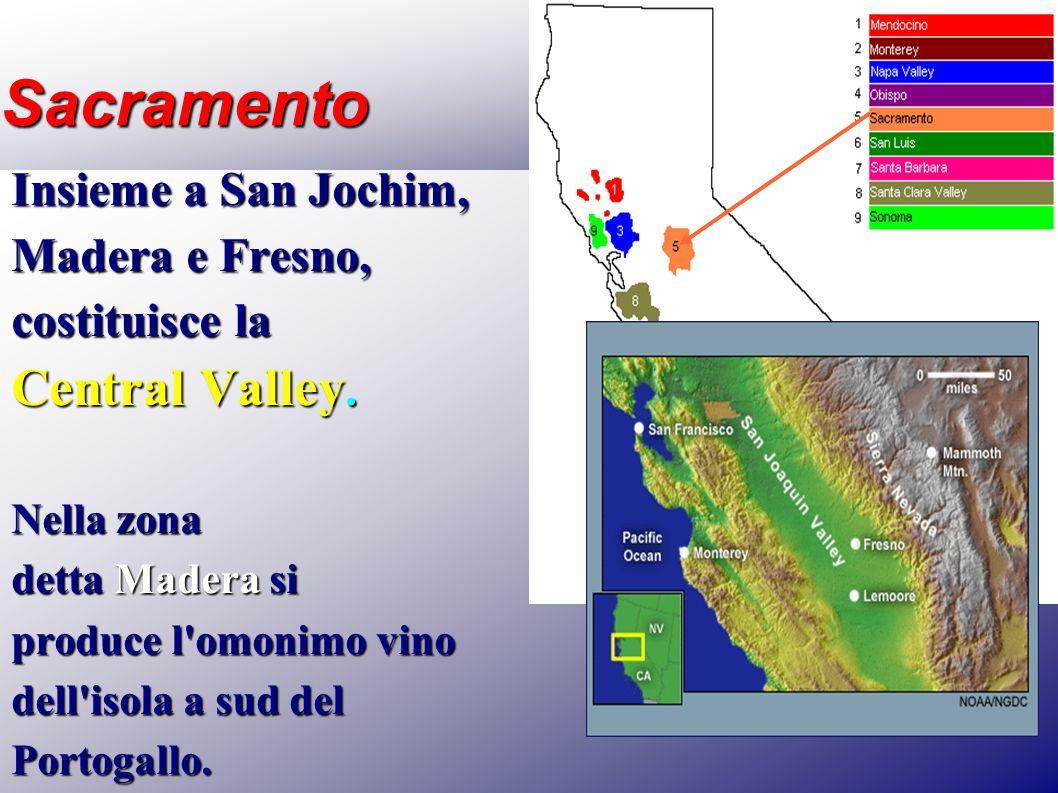 Sacramento Insieme a San Jochim, Madera e Fresno, costituisce la Central Valley. Nella zona detta Madera si produce l'omonimo vino dell'isola a sud de