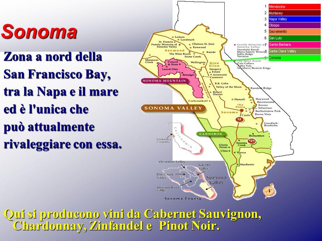 Sonoma Zona a nord della San Francisco Bay, tra la Napa e il mare ed è l'unica che può attualmente rivaleggiare con essa. Qui si producono vini da Cab