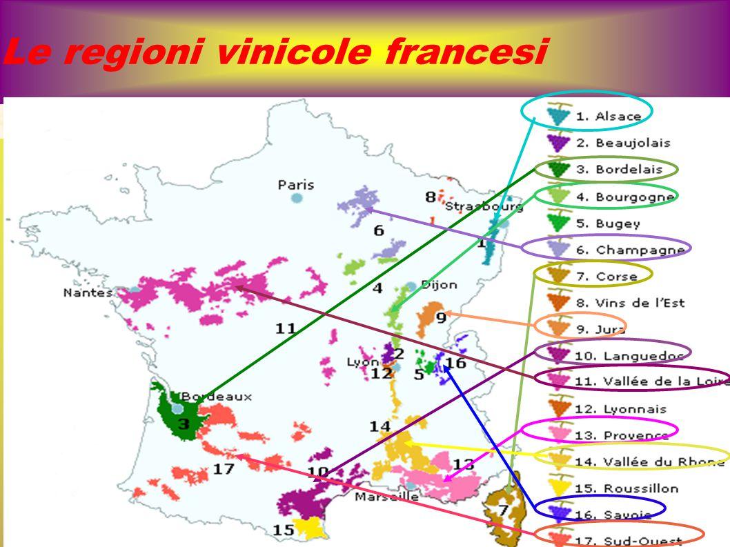 Bordeaux: I E considerata la zona vinicola più importante del MONDO Vitigni rossi: cabernet sauvignon e franc, merlot (il più coltivato), Malbec (detto Cot), Petit Verdon, Carmenere...