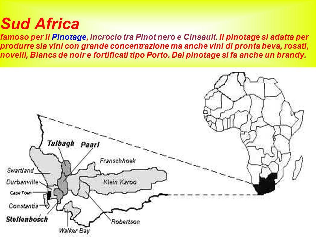 Sud Africa famoso per il Pinotage, incrocio tra Pinot nero e Cinsault. Il pinotage si adatta per produrre sia vini con grande concentrazione ma anche