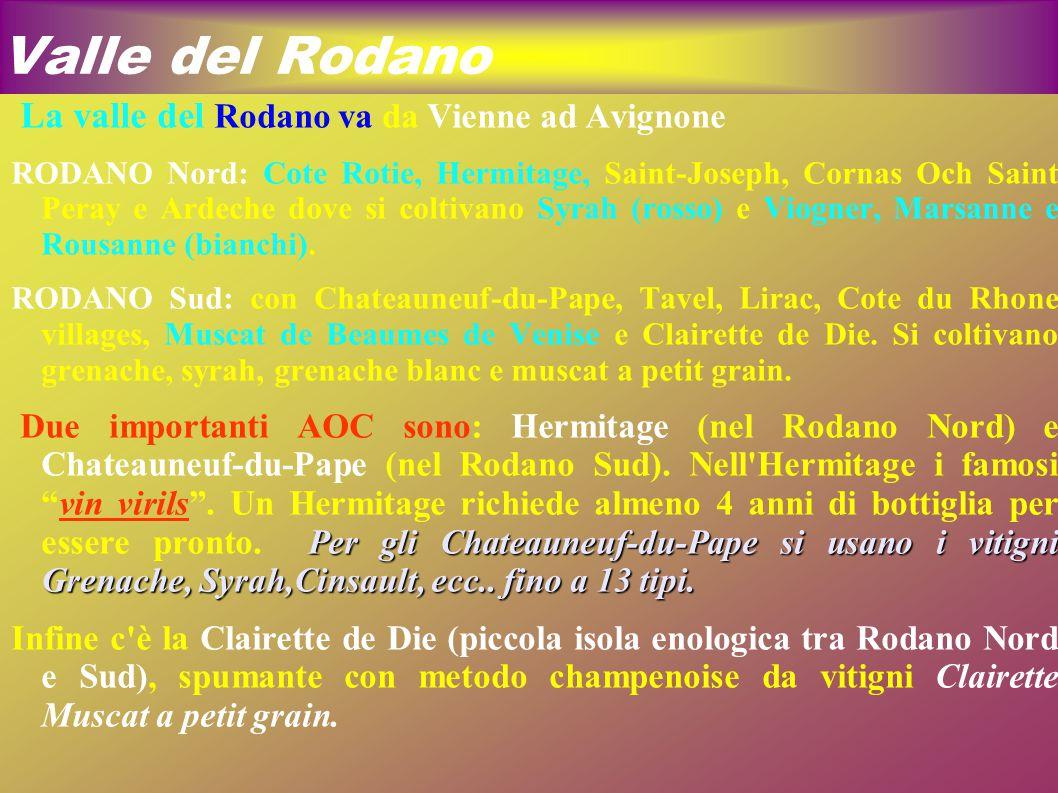Valle del Rodano La valle del Rodano va da Vienne ad Avignone RODANO Nord: Cote Rotie, Hermitage, Saint-Joseph, Cornas Och Saint Peray e Ardeche dove