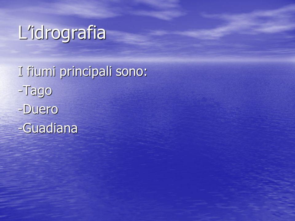L'idrografia I fiumi principali sono: -Tago-Duero-Guadiana