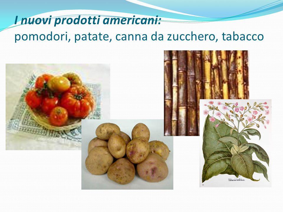 I nuovi prodotti americani: pomodori, patate, canna da zucchero, tabacco