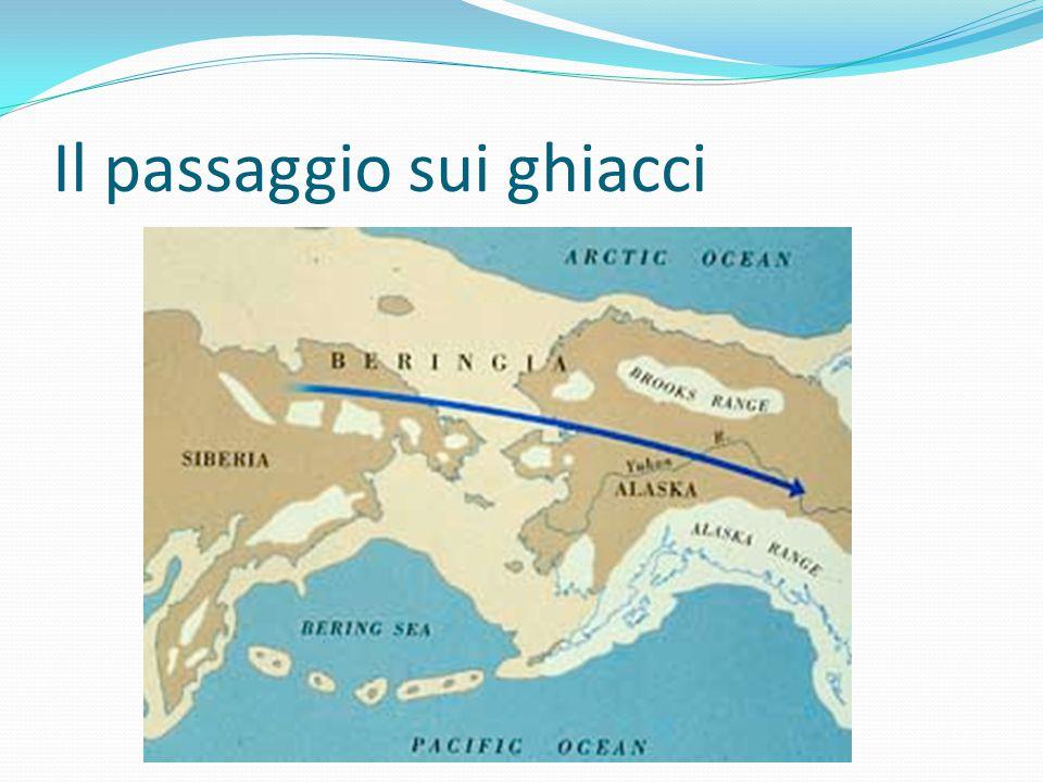 L'America isolata dal mondo Con lo scioglimento dei ghiacci lo stretto di Bering diviene impraticabile e il contatto fra Asia e America si interrompe.