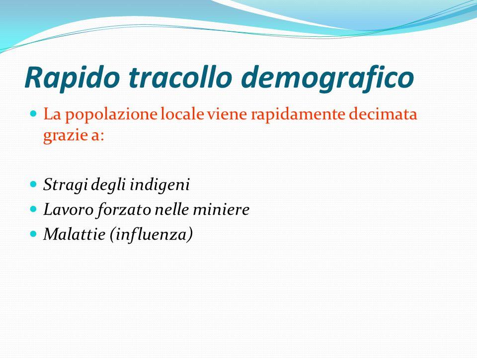 Rapido tracollo demografico La popolazione locale viene rapidamente decimata grazie a: Stragi degli indigeni Lavoro forzato nelle miniere Malattie (influenza)