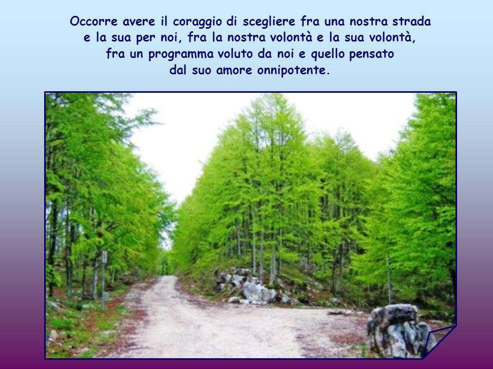Bisogna preparargli la strada, togliendo gli ostacoli ad uno ad uno: quelli posti dal nostro modo limitato di vedere, dalla nostra volontà debole.