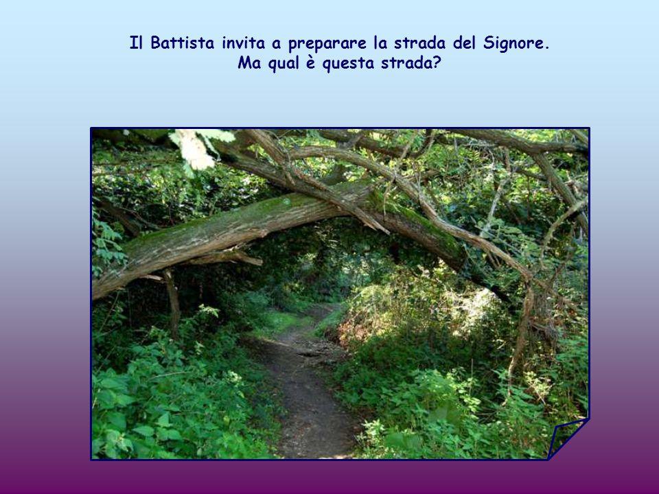 Il Battista invita a preparare la strada del Signore. Ma qual è questa strada?