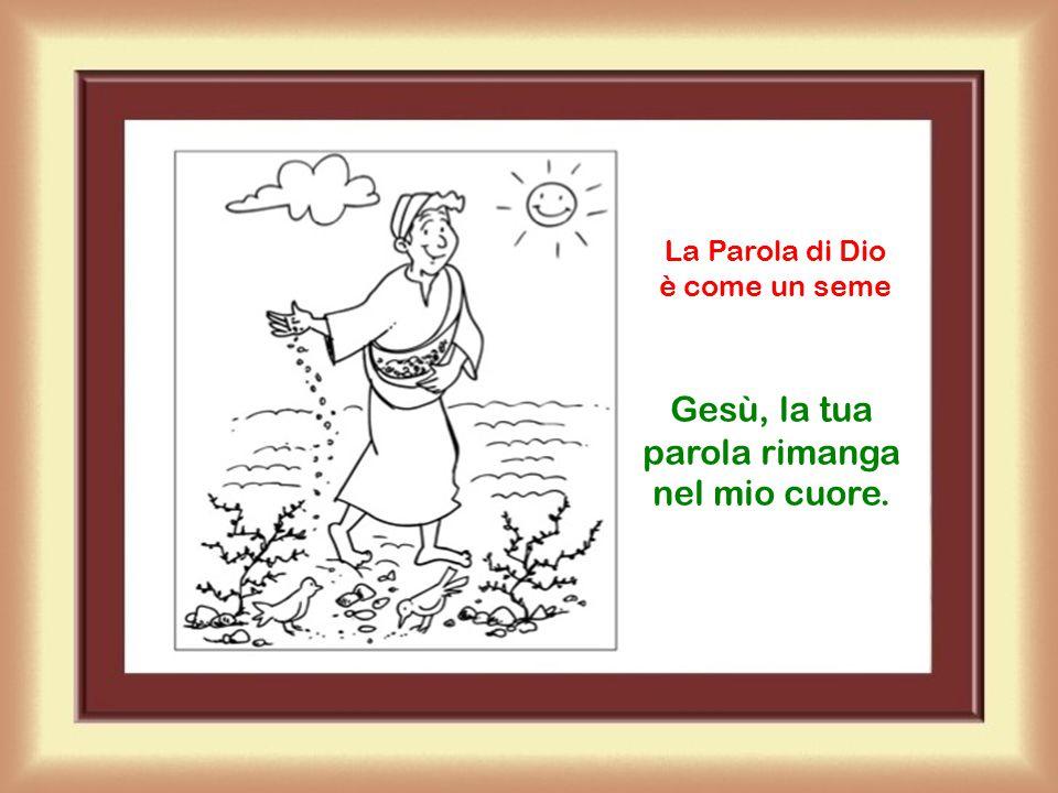 Acclamiamo al Vangelo Lode a te, Signore Gesù.