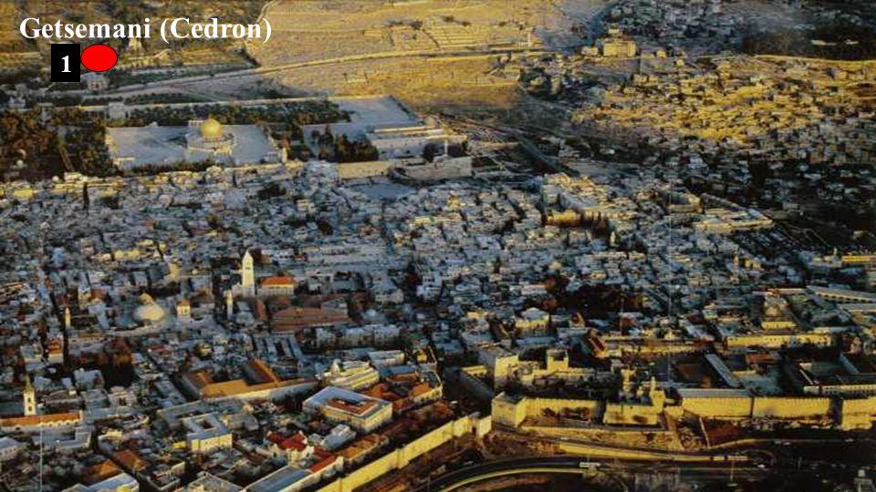 1 Getsemani (Cedron)