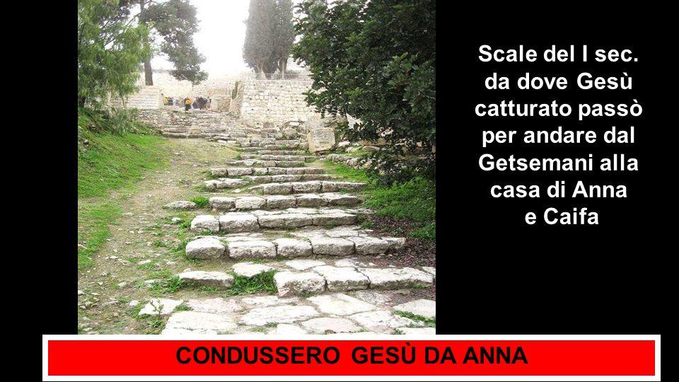CONDUSSERO GESÙ DA ANNA Scale del I sec.