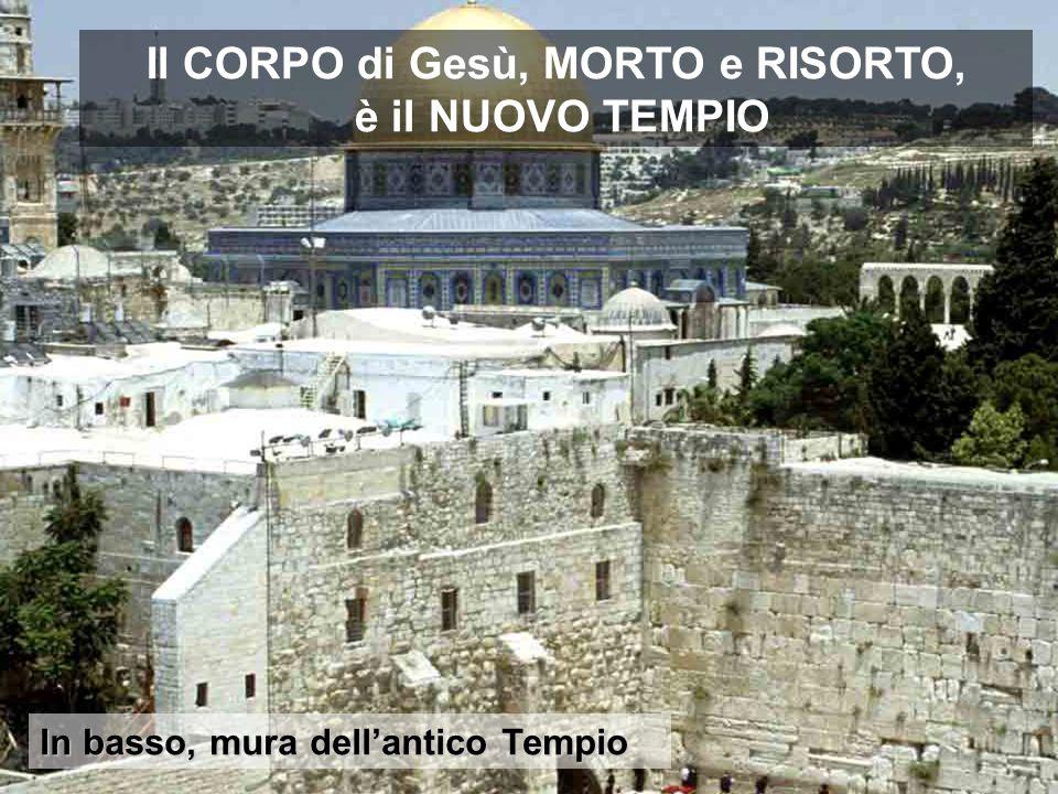 In basso, mura dell'antico Tempio Il CORPO di Gesù, MORTO e RISORTO, è il NUOVO TEMPIO