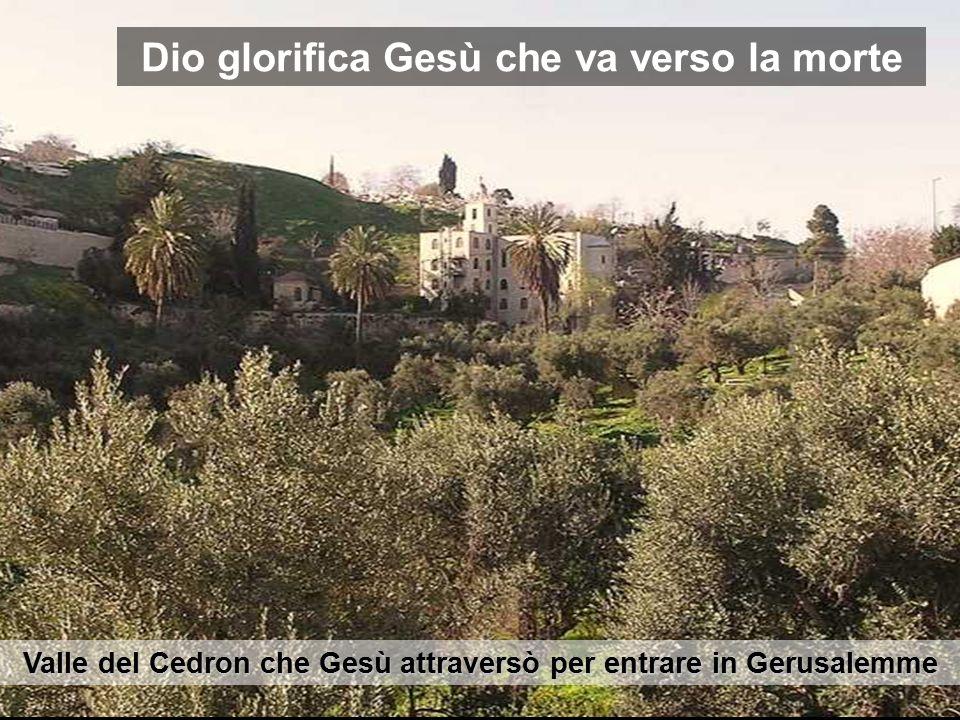 Valle del Cedron che Gesù attraversò per entrare in Gerusalemme Dio glorifica Gesù che va verso la morte