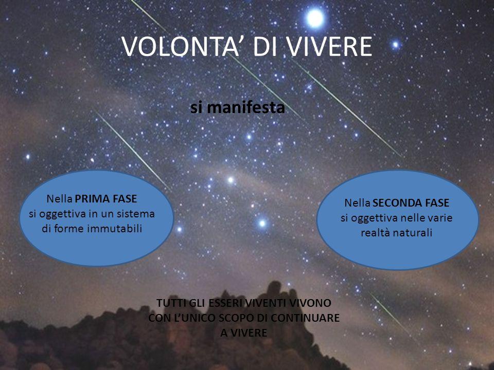 VOLONTA' DI VIVERE si manifesta Nella PRIMA FASE si oggettiva in un sistema di forme immutabili Nella SECONDA FASE si oggettiva nelle varie realtà nat