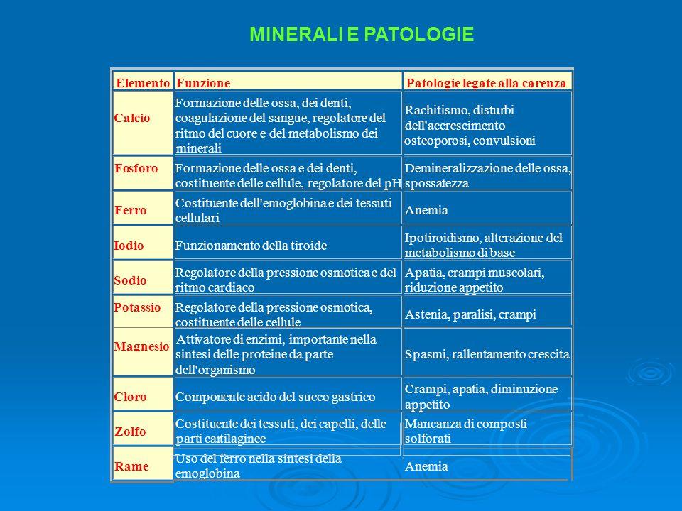Elemento Funzione Patologie legate alla carenza Calcio Formazione delle ossa, dei denti, coagulazione del sangue, regolatore del ritmo del cuore e del