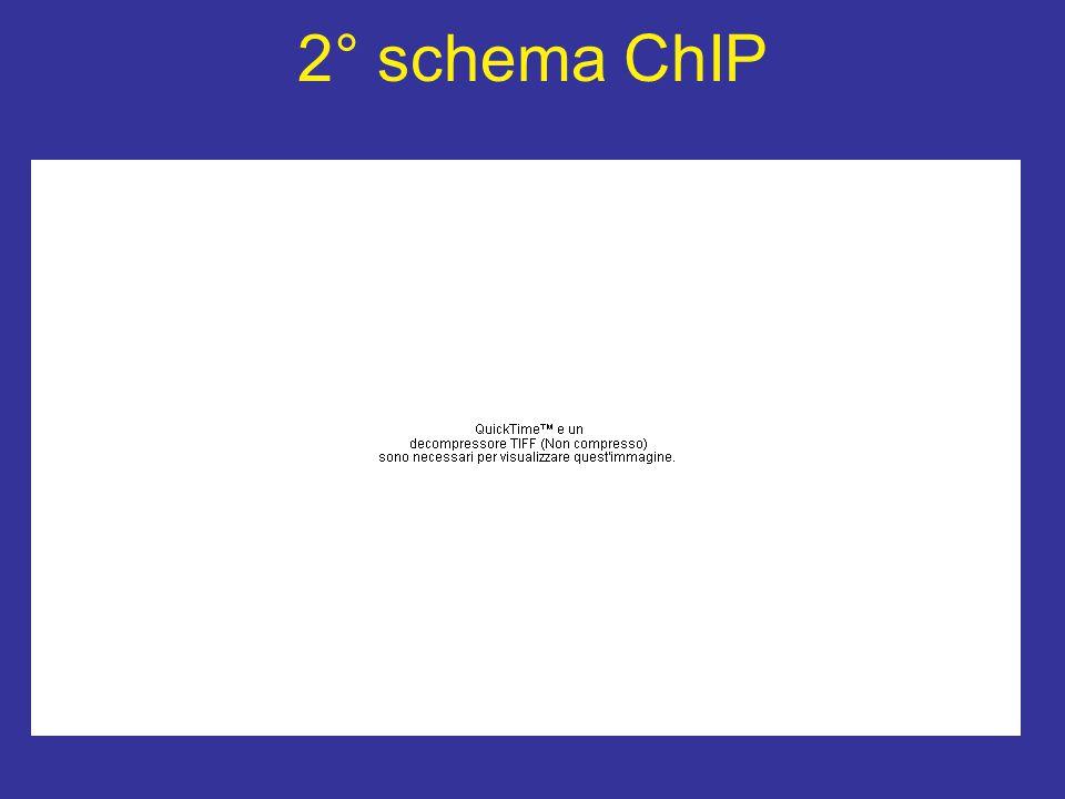 2° schema ChIP