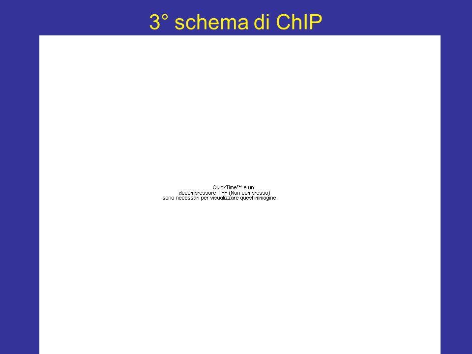 3° schema di ChIP