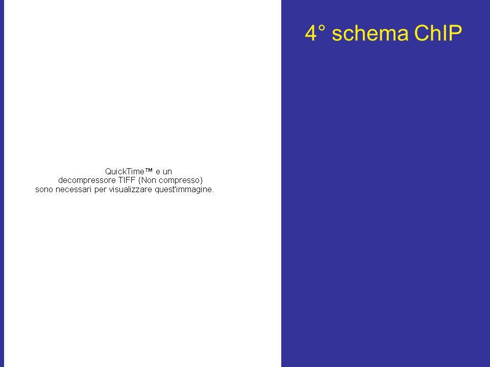 4° schema ChIP