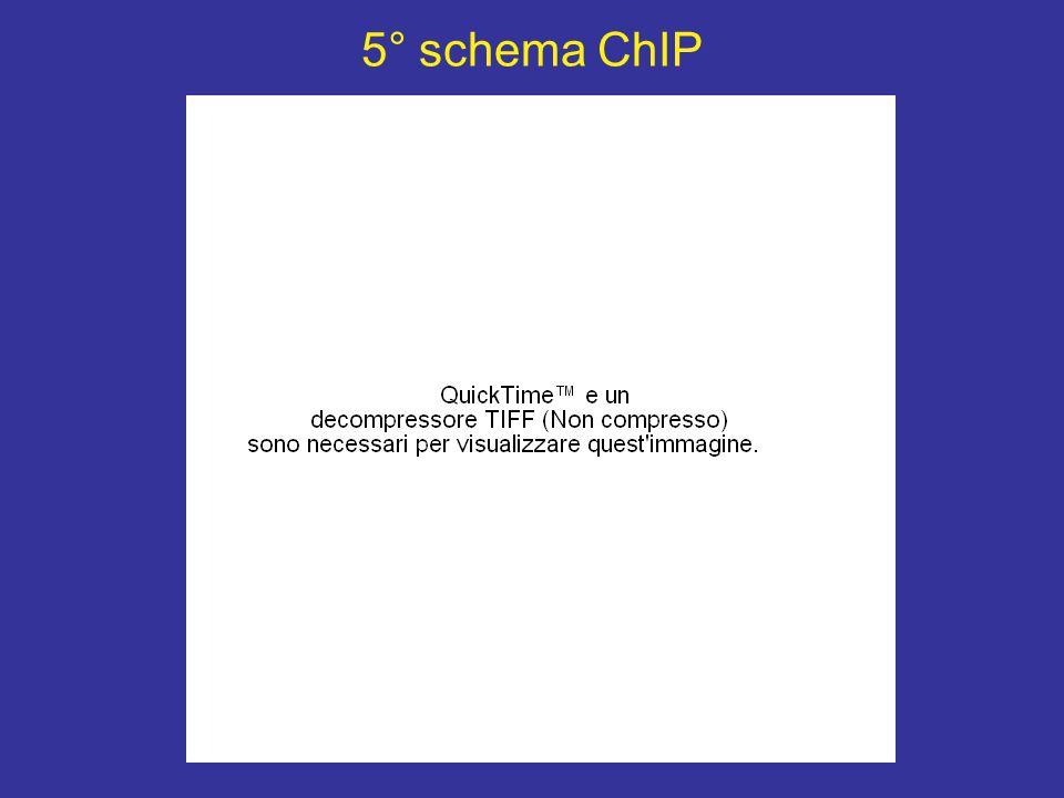 5° schema ChIP