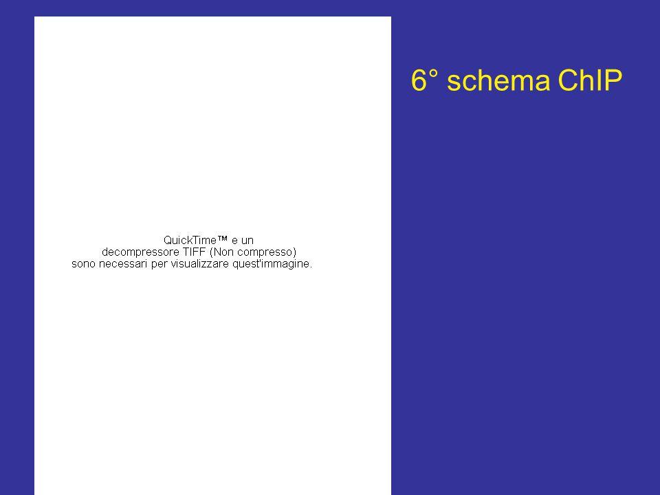 6° schema ChIP