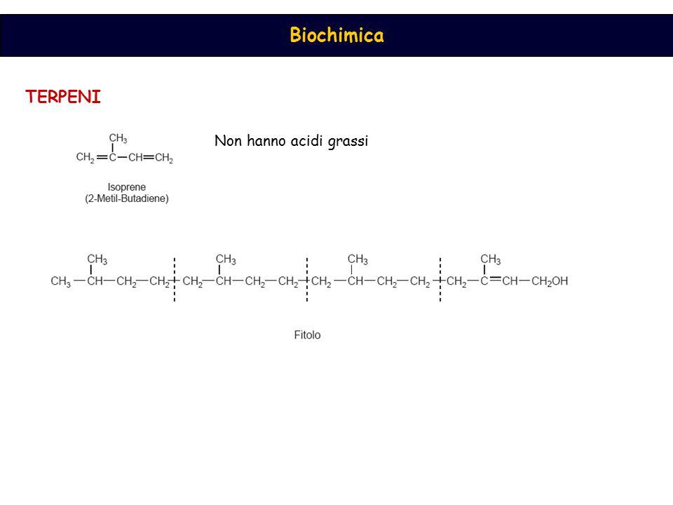 Biochimica TERPENI Non hanno acidi grassi