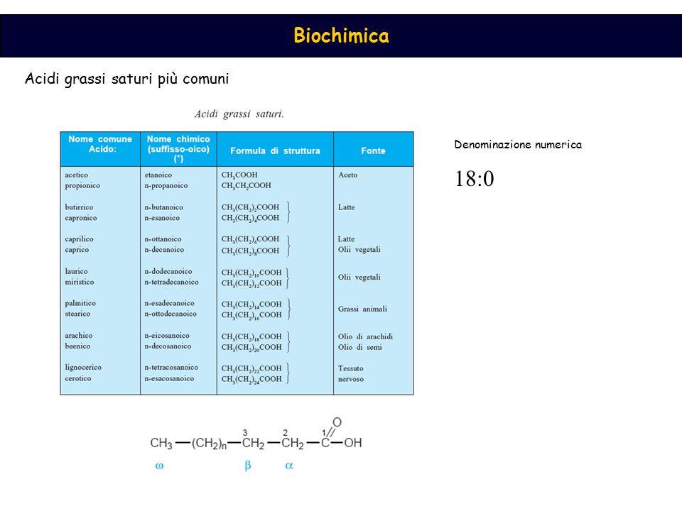 Biochimica Acidi grassi insaturi Gli acidi grassi naturali sono preferenzialmente nella configurazione cis, e i doppi legami non sono coniugati (18:1, ∆9) (18:2, ∆9,∆12) ω9ω9 ω6ω6 ω3ω3 La presenza del doppio legame comporta un abbassamento del p.to di fusione Perciò la fluidità degli acidi grassi e dei lipidi che li contengono è inversamente proporzionale alla lunghezza delle catene e direttamente proporzionale al numero di doppi legami cis
