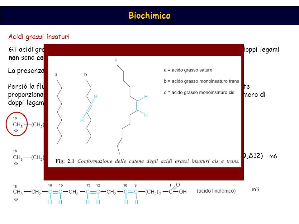 Biochimica Acidi grassi insaturi Gli acidi grassi naturali sono preferenzialmente nella configurazione cis, e i doppi legami non sono coniugati (18:1,