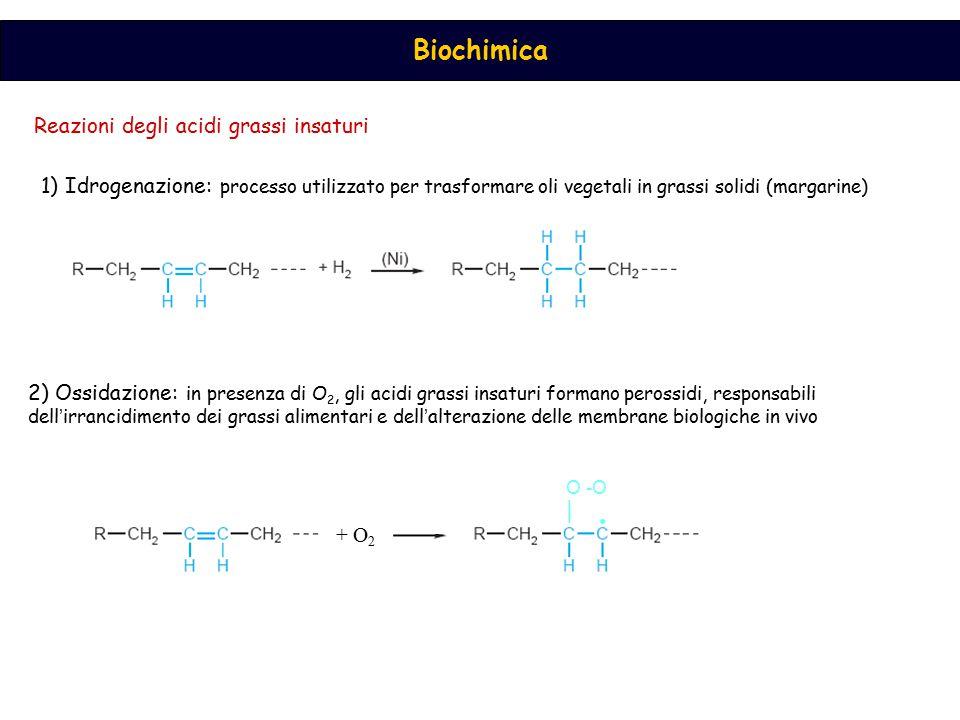 Biochimica Reazioni degli acidi grassi insaturi 1) Idrogenazione: processo utilizzato per trasformare oli vegetali in grassi solidi (margarine) 2) Oss