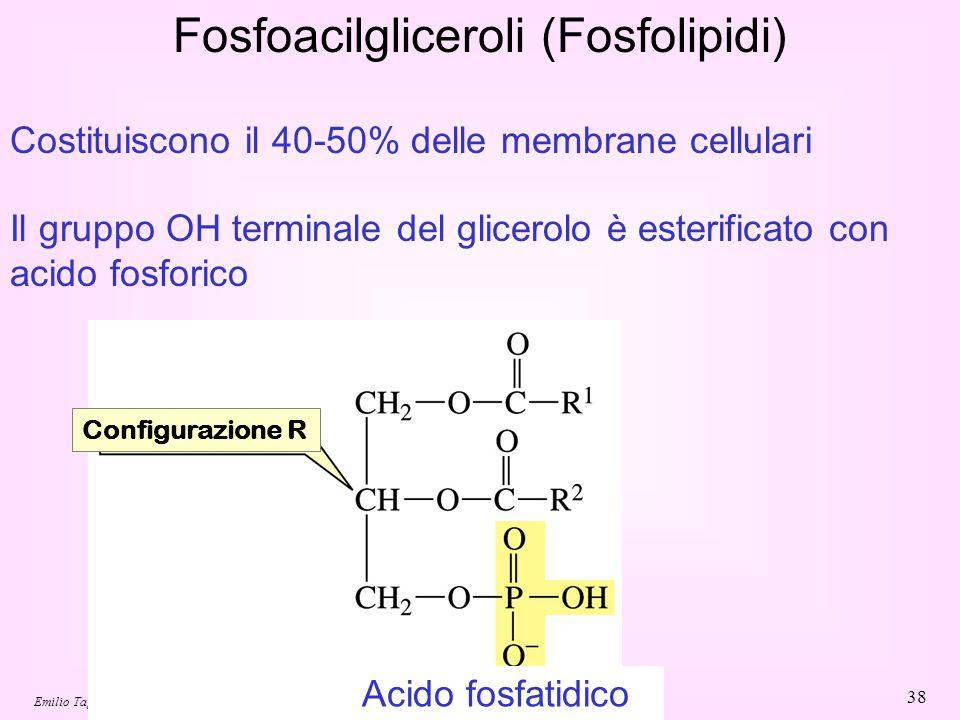 Emilio Tagliavini - Chimica delle Sostanze Naturali 2007/08 38 Fosfoacilgliceroli (Fosfolipidi) Il gruppo OH terminale del glicerolo è esterificato co