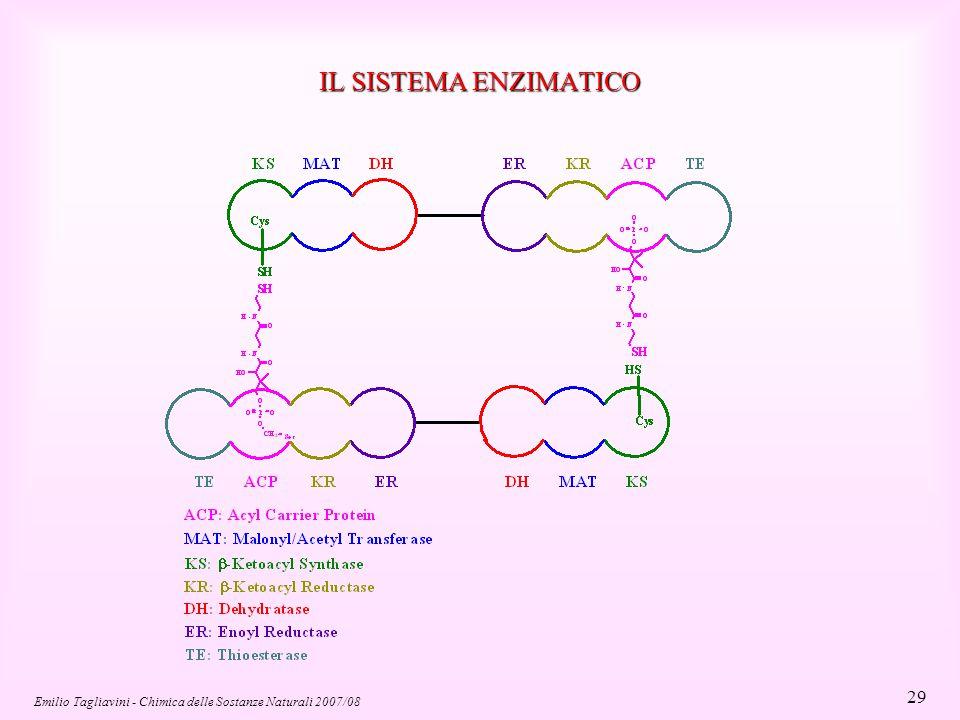 Emilio Tagliavini - Chimica delle Sostanze Naturali 2007/08 40 Molecola di colesterolo Testa polare Catena apolare di un acido grasso Le membrane biologiche sono costituite da un doppio strato fosfolipidico Gli acidi grassi saturi diminuiscono la fluidità di membrana perchè le loro catene idrocarburiche possono impaccarsi in modo compatto Gli acidi grassi insaturi hanno effetto opposto Ingrandimento di un fosfolipide