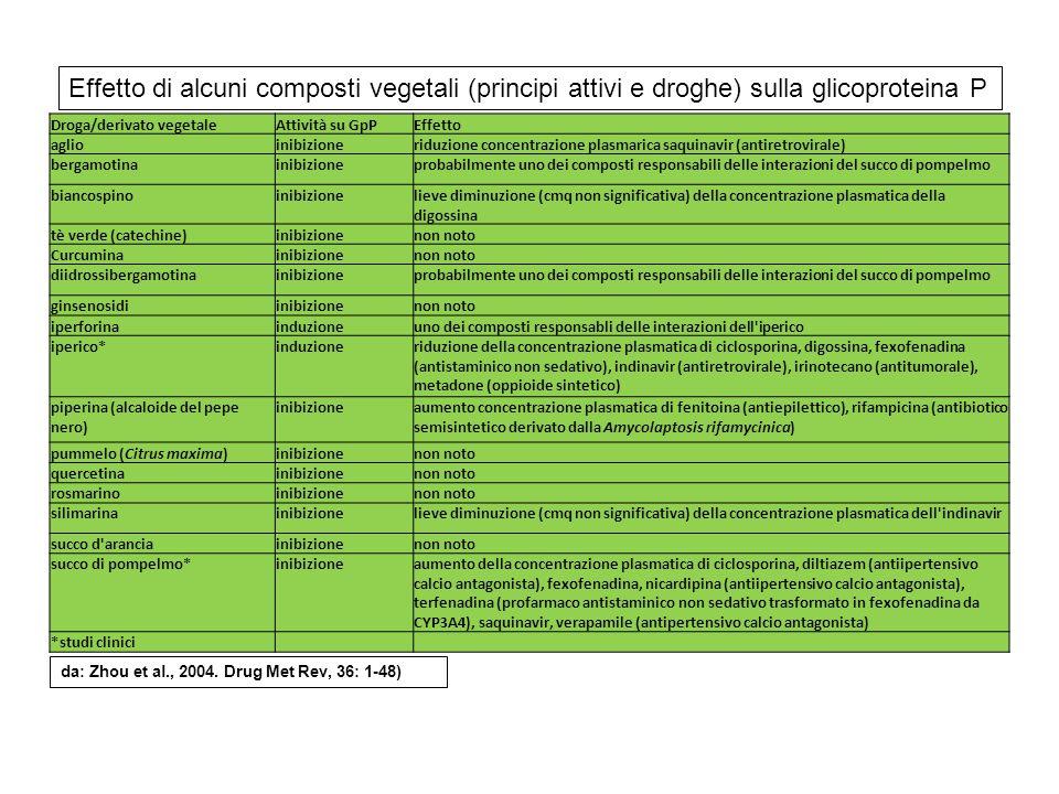 Droga/derivato vegetaleAttività su GpPEffetto aglioinibizioneriduzione concentrazione plasmarica saquinavir (antiretrovirale) bergamotinainibizionepro