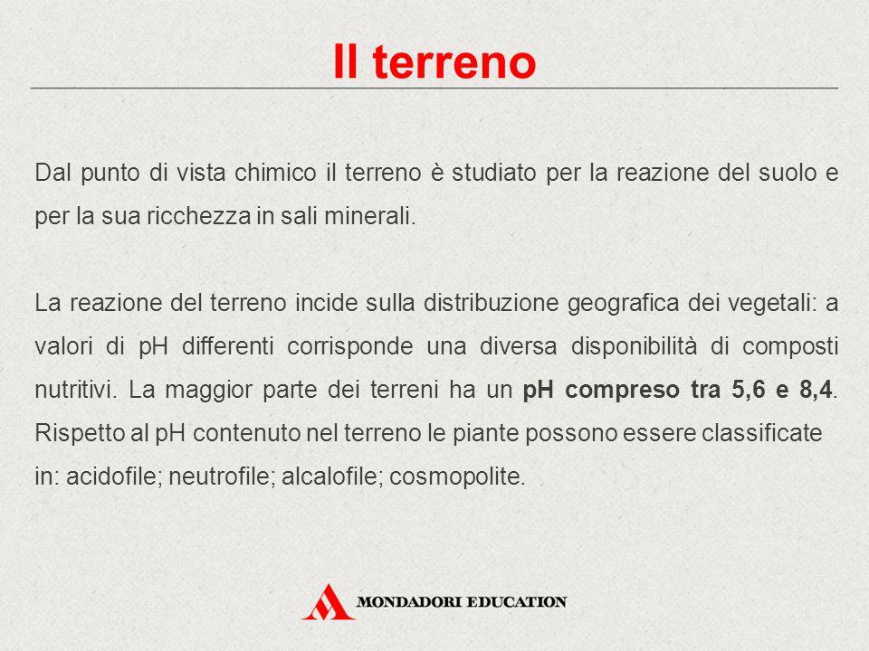 Dal punto di vista chimico il terreno è studiato per la reazione del suolo e per la sua ricchezza in sali minerali.